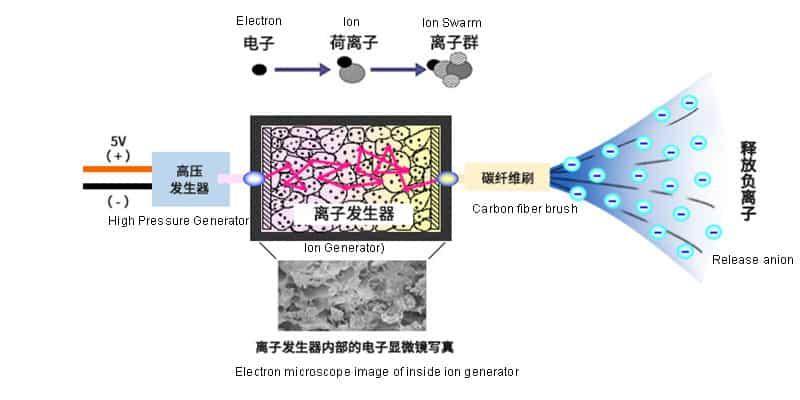 Anion Generator Diagram